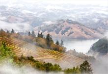 Autumn Morning Lake Sonoma 2