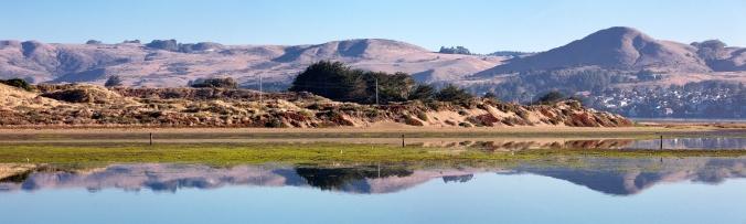 bodega-bay-reflection-morning-pano