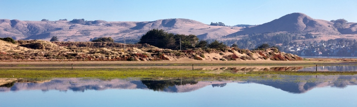 bodega-bay-reflection-morning-pano