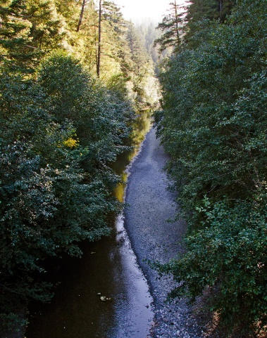 Creek-Winds-West
