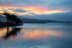 Cypress Reflection at Sunrise