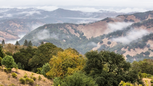 Hills-Surrounding-Lake-Sonoma