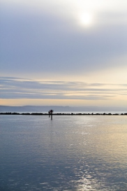 Jetty-Bodega-Bay