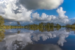 Laguna Cloud Reflection