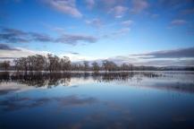 Laguna-Reflections