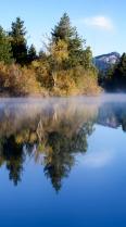 Morning Mist Vertical Panorama