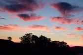 Summer Sunset 2015