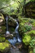 waterfall-on-geysers-road
