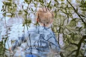 Rain-on-Spring-Lake