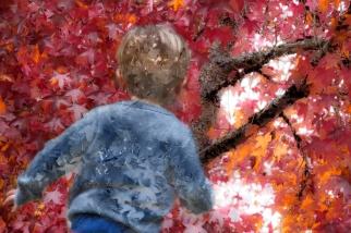 Seasons-Colorguard