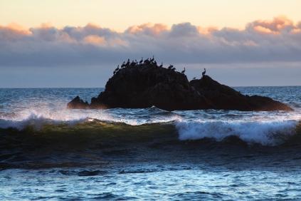Pelican Pod and Last Light Highlights