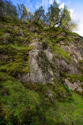 Pine Flat Road Cliff