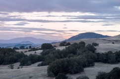 Sonoma County Summer Sunset
