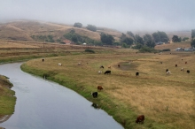 West County Ranch