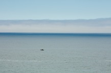 Fishing-into-the-Blue-Yonder-2