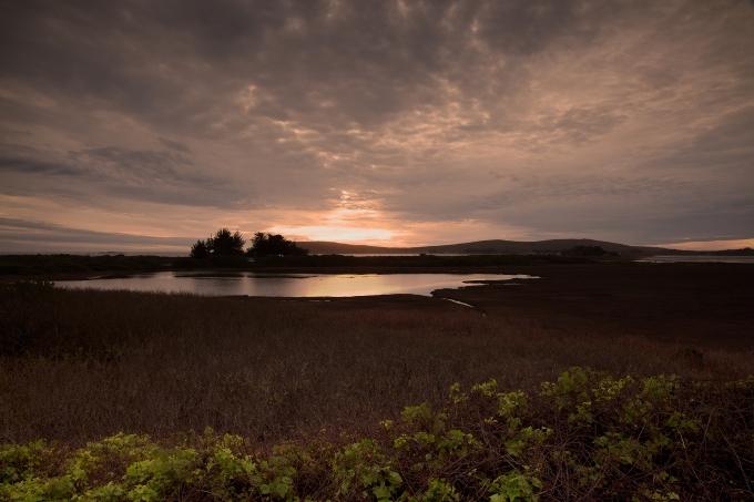 Doran-Marsh-Evening